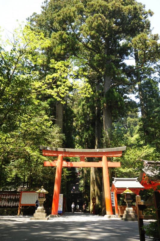 s_箱根神社01
