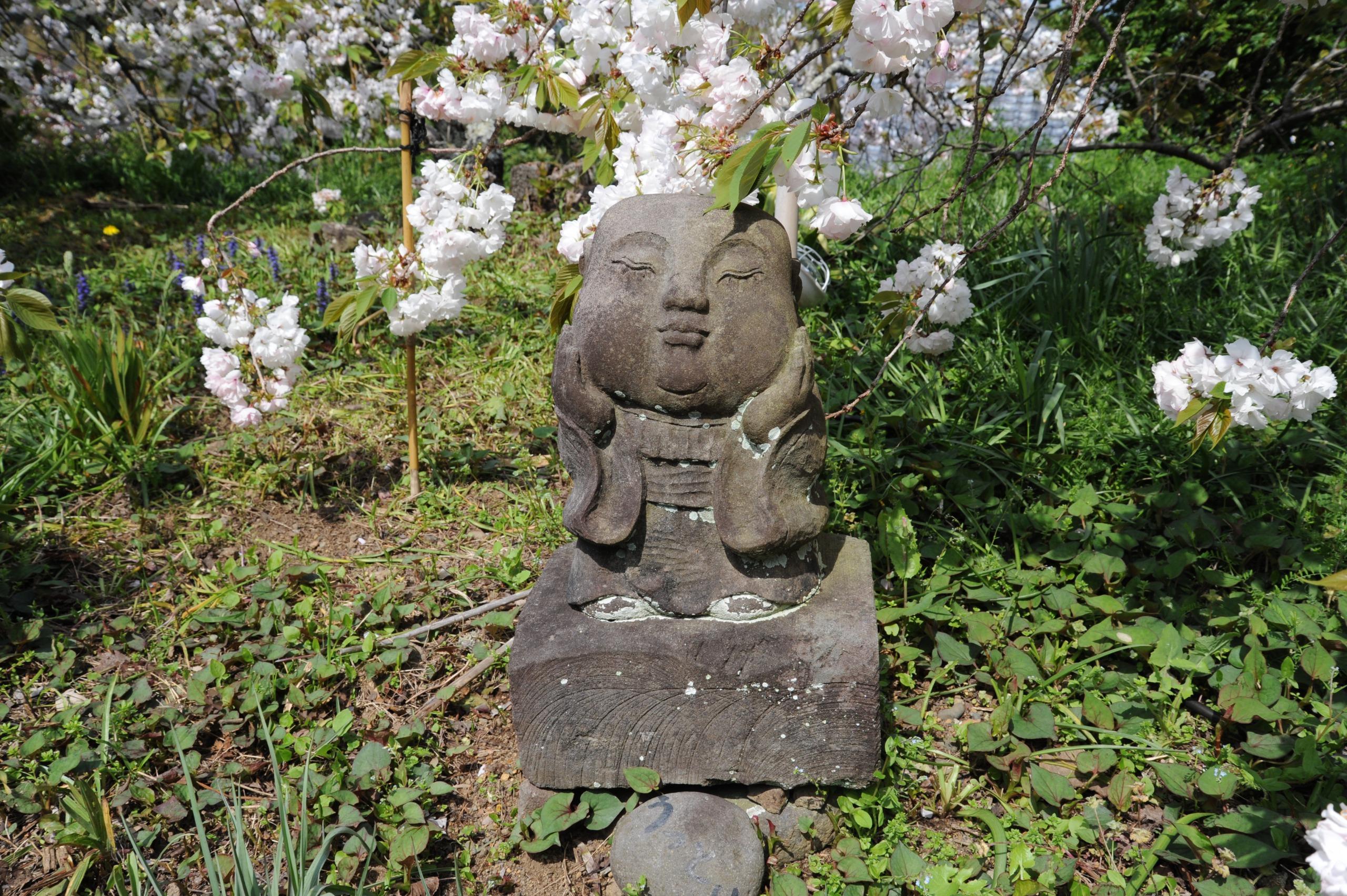 160413最福寺⑥